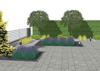 Projekty zieleni publicznej