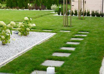 ścieżka w trawniku